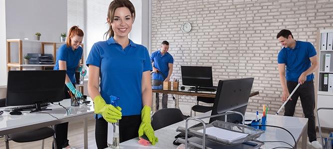Cleanout Services